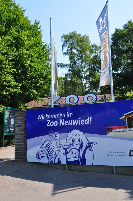 """Warum in die Ferne schweifen? - oder: der """"Historische Römer- und Kelten-Wanderweg"""" bei Neuwied"""