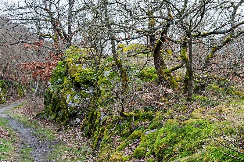 """Burg und Tal und Wasserfall - oder: der """"Traumpfad Pyrmonter Felsensteig"""""""