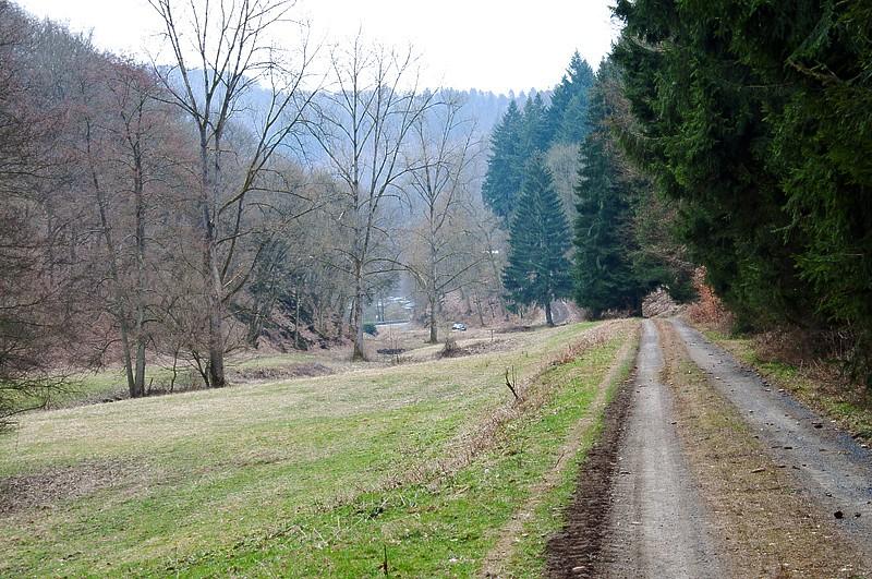 Vier Füße für ein Halleluja - oder: durchs wilde Nonnenbachtal