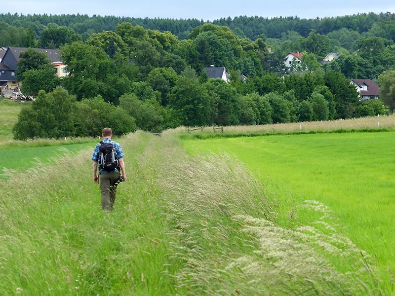 """Es ist ja alles so schön bunt hier - oder: der """"Färberweg"""" bei Altenkirchen (Autorin: Petra Müller)"""