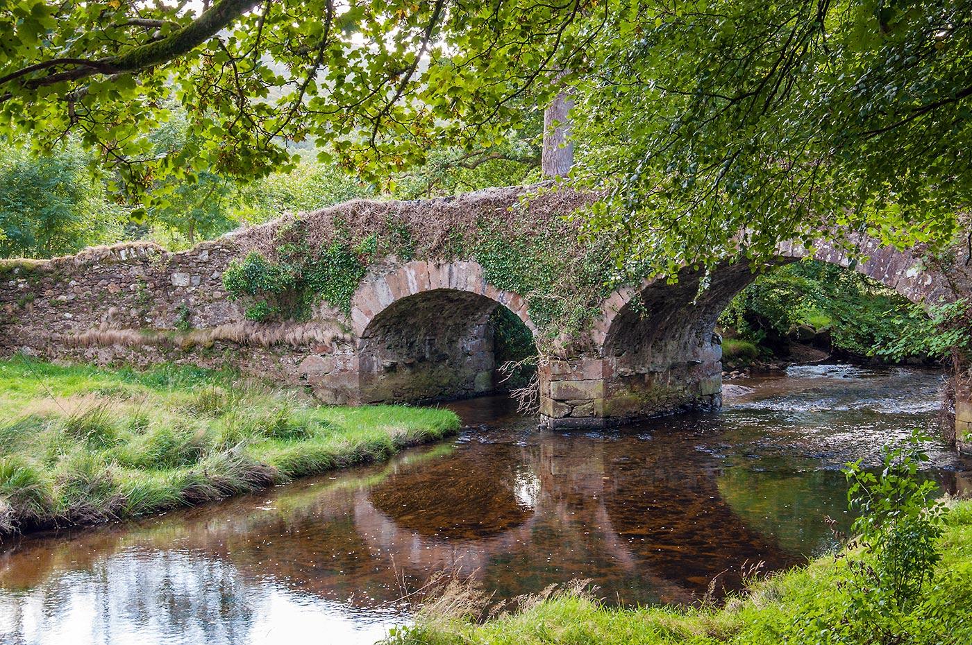 """Don't Believe a Word"" - oder: Glendalough + Mount Usher (Irland - der Mittwoch)"
