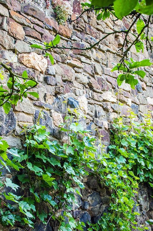"""Steine, nichts als Steine - oder: der """"Geopfad Vinxtbachtaler"""""""