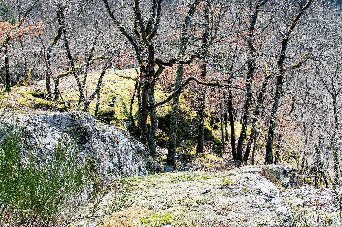Klettersteig Ardennen : Klettersteigen mountain network