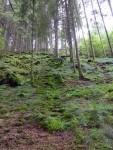 Achouffe und das Tal der Feen