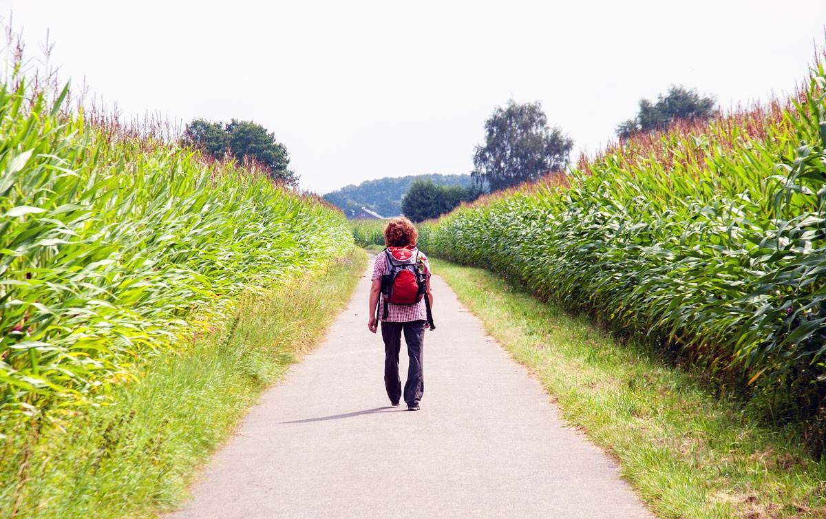 Wandern auf dem Jakobsweg am Niederrhein