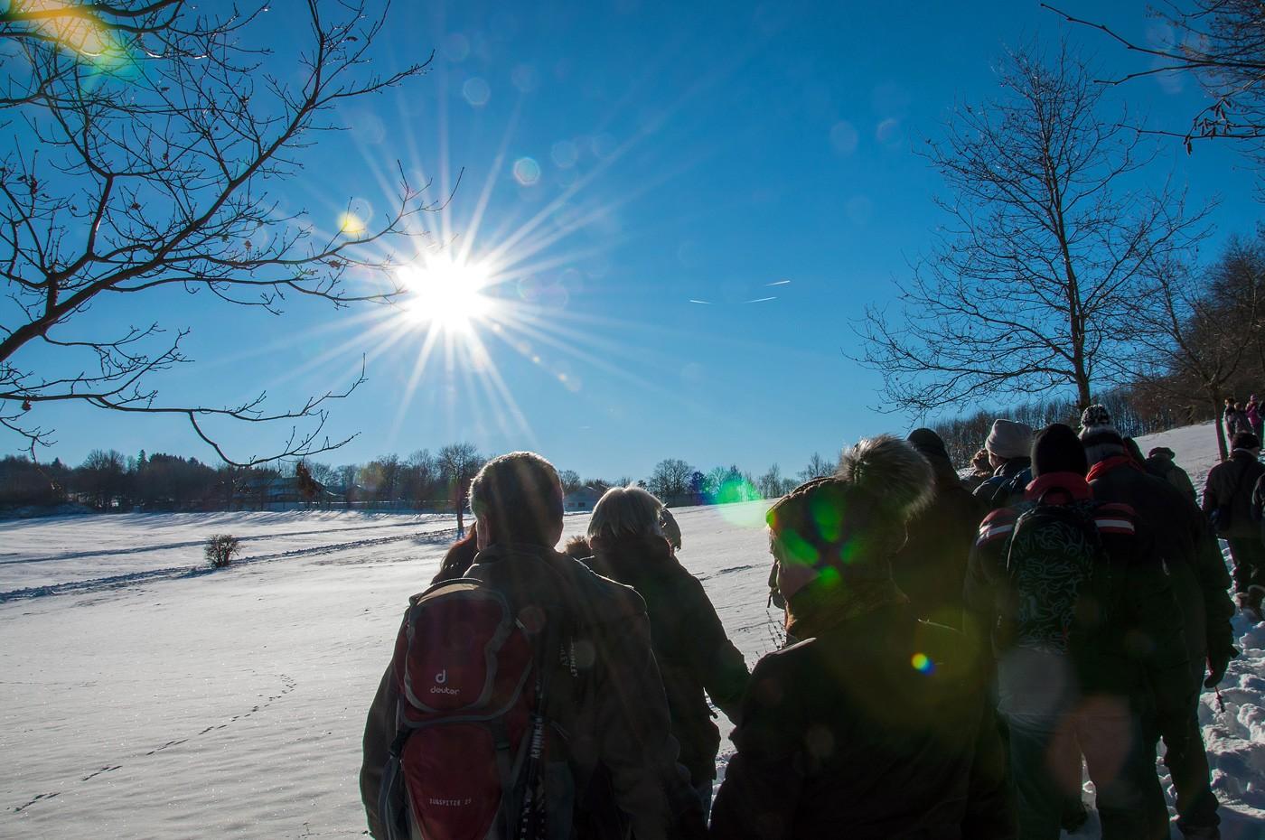 Winterwanderung rund um den Stöffelpark im Westerwald