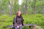 Auf dem Heidschnuckenweg von Niederhaverbeck nach Undeloh (Etappe 4)