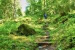 Eifel. Wanderungen für die Seele: »Felsen, Pfade, alte Burgen rund um Gerolstein«