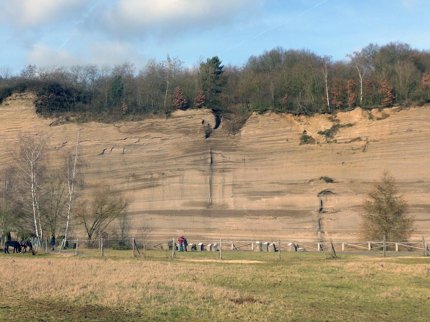 Die Wingertsbergwand bei Mendig in der Osteifel