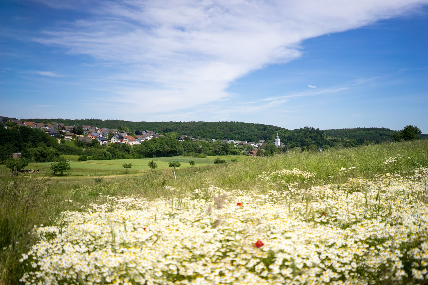 Blick auf Königsfeld
