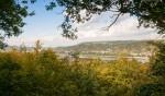 Wein, Damen und Gesang - Genusswandern in Rheinhessen auf dem »RheinTerrassenWeg« (Mettenheim - Guntersblum)
