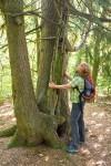Eifel. Wanderungen für die Seele: »Schlemmen und Staunen rund um die Maare bei Gillenfeld«
