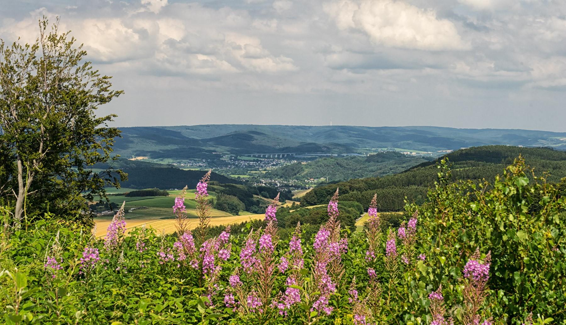 Altenhellefeld im Sauerland