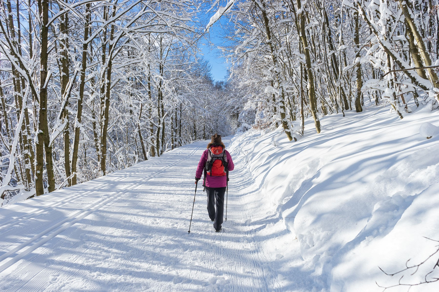 Winterwandern in Willingen