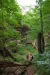 Wildnis–Steig Altenbeken