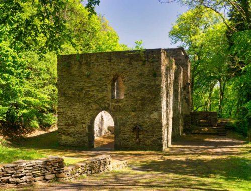 Auf schattigen Höhen zwischen Burg Sayn und Isenburg