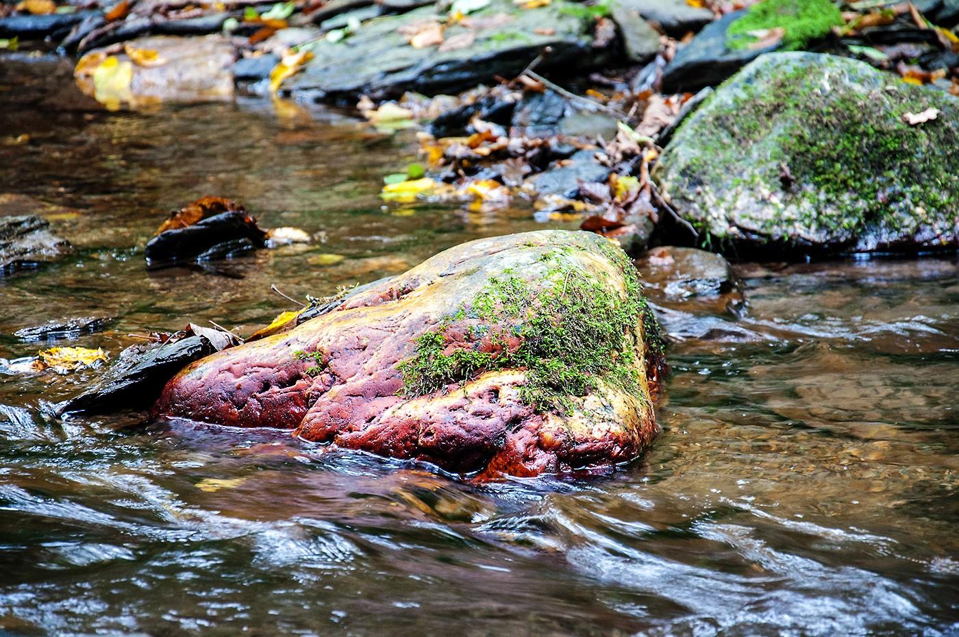 """Wo die wilden Wasser wirbeln - oder: die """"Traumschleife Ehrbachklamm"""""""